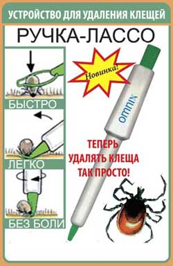 http://rrc2011.rogaining.ru/images/stories/acarus/kl160000.jpg